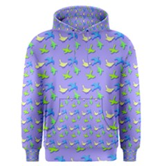 Blue And Green Birds Pattern Men s Pullover Hoodies by LovelyDesigns4U
