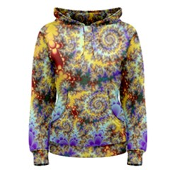 Desert Winds, Abstract Gold Purple Cactus  Women s Pullover Hoodie by DianeClancy