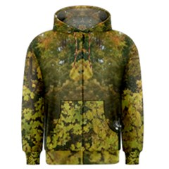 Tree With Green & Yellow Leaves Men s Zipper Hoodie by SusanFranzblau