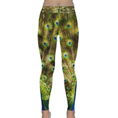 Peacock Bird Classic Yoga Leggings by Simbadda
