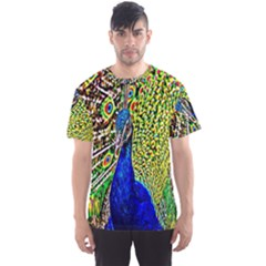 Graphic Painting Of A Peacock Men s Sport Mesh Tee by Simbadda