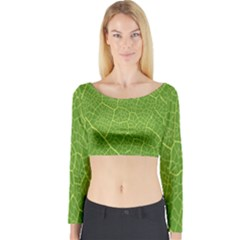 Green Leaf Line Long Sleeve Crop Top by Mariart