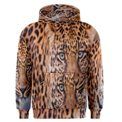 Tiger Beetle Lion Tiger Animals Leopard Men s Pullover Hoodie by Mariart