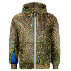 Peacock Plumage Bird Peafowl Men s Zipper Hoodie