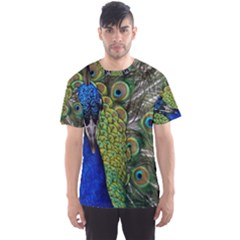 Peacock Close Up Plumage Bird Head Men s Sports Mesh Tee