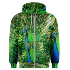 Peacock Peafowl Pattern Plumage Men s Zipper Hoodie