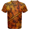 Autumn Leaves Forest Fall Color Men s Cotton Tee View1